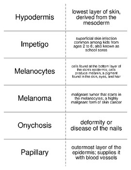 Integumentary System Vocabulary Flash Cards for Physiology Students