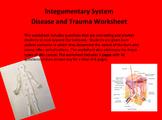 Integumentary System Worksheet - Cancer and Burns