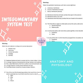 Integumentary Test