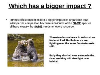 Interaction Between Organisms.