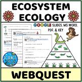 Interactions In Ecosystems Webquest - Digital & Printable