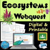 Interactions In Ecosystems WebQuest