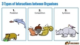 Interactions between Organisms (Symbiosis, Competition, &