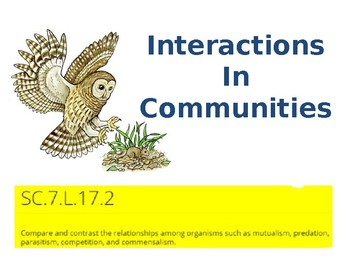 Interactions in Communities