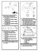 Interactions in Ecosystems Test