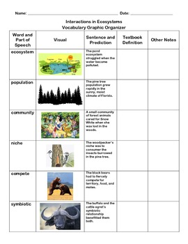 Interactions in Ecosystems Vocabulary Graphic Organizer