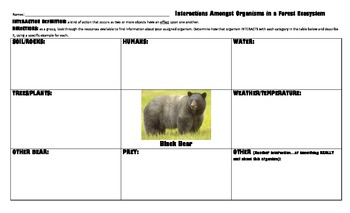 Interactions in a Forest Ecosystem Research Project- w/10 Graphic Organizers