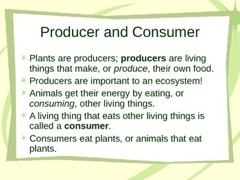 Interactions of Living Things and Their Environment Powerpoint