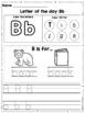 Interactive Alphabet Notebook (ENGLISH)