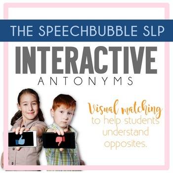 Interactive Antonyms