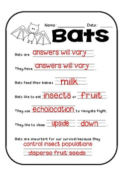 Interactive Bat Lapbook