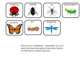Interactive Book: Insects; Special Education; Autism; Speech Therapy; Preschool;