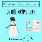 Interactive Book:  Winter Vocabulary