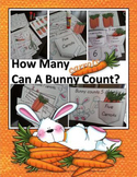Interactive Booklet - How Many Carrots Can A Bunny Count?