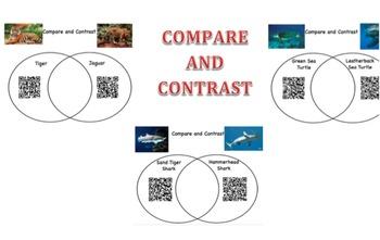 Interactive Bulletin Board: Compare and Contrast Animals
