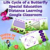 Interactive Butterfly Life Cycle Special Education Google