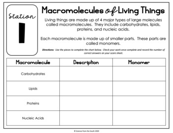 Interactive Chemistry of Life (Biochemistry) Review Stations