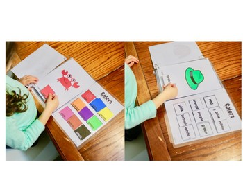 Interactive Color Books- Early learning and Special Ed