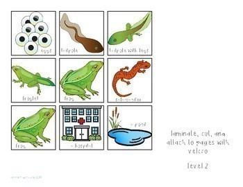Interactive Comprehension Book: Frogs