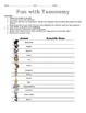 Interactive Dichotomous Key - Fun with Classification Activity