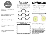 Interactive Diffusion Trifold Leaflet - Differentiated and engaging