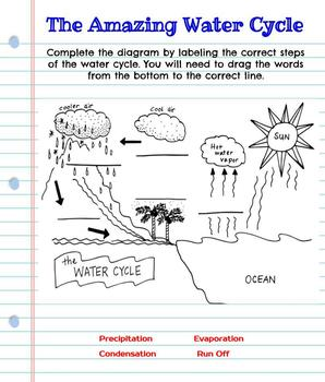 Interactive Digital Notebook: Water Cycle- Google Classroom Resource