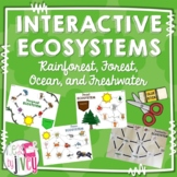 Ecosystems Interactive Activities: Food Webs & Food Chains