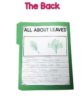 Interactive Fact Folder - Leaves