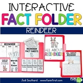 Interactive Fact Folder - Reindeer