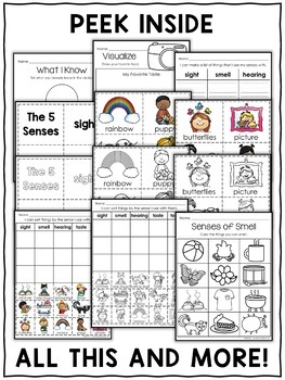 Interactive Activities  - Five Senses
