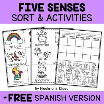 Interactive Five Senses Activities