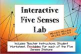 Interactive Five Senses Lab (NGSS MS-LS1-3, MS-LS1-8, HS-LS1-2, HS-LS1-3)