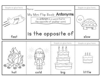 Synonyms , Antonyms , Homophones , Homographs Flip Books