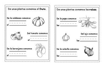 Interactive Garden Notebook - Cuaderno Interactivo del jardin Kinder