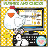 Interactive Google Slides...Bunnies and Chicks...Informati