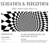 Interactive/Guided Notes | AP Psychology | Sensation & Perception *Block *Edit