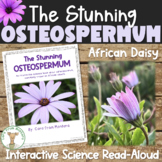 Nonfiction Science Book - The Stunning Osteospermum