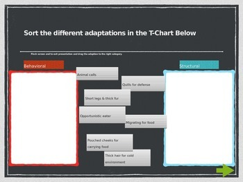 Interactive Learning- Animal Adaptations