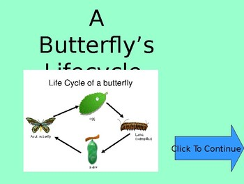 Interactive Life Cycle of a Butterfly Game/Powerpoint