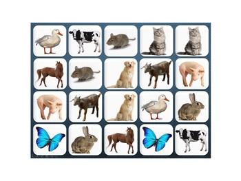 Interactive Memory- Farm Animals