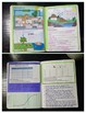 Ecology Interactive Notebook