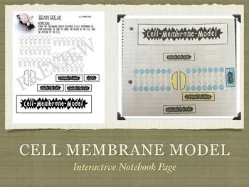 Interactive Notebook Biology Science Set #2