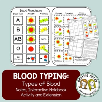 Blood Typing Interactive Notebook Notes and Activity