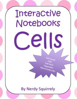 Interactive Notebook Cells