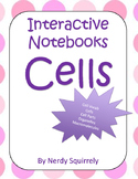 Interactive Notebook Cells
