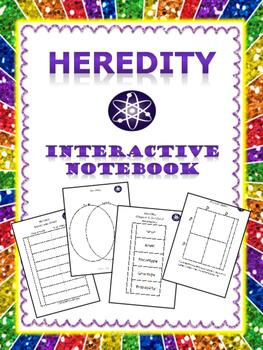 Interactive Notebook: Heredity