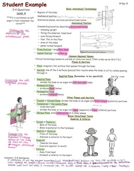 Interactive Notebook: Introduction & Intro to the Human Body (Student Example)