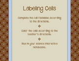Labeling Cells Interactive Notebook Activity