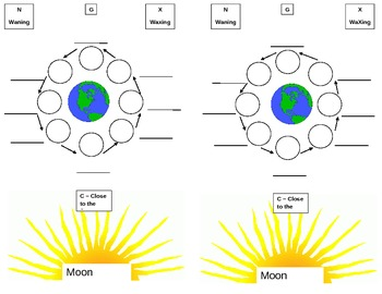 Interactive Notebook Moon Phases Sheet