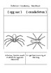 Interactive Notebook Spider Word Defintions
